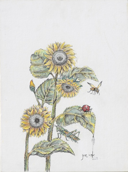 Sunflower  H 40 cm x  W 30 cm Colored Pencils & Ink